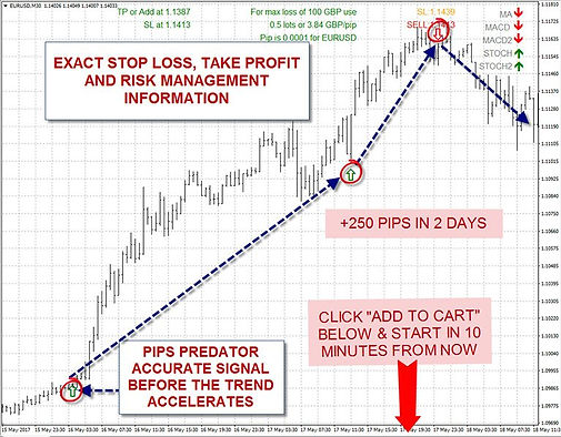risk management in trade