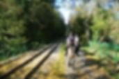 DSC_4279 (800x536).jpg