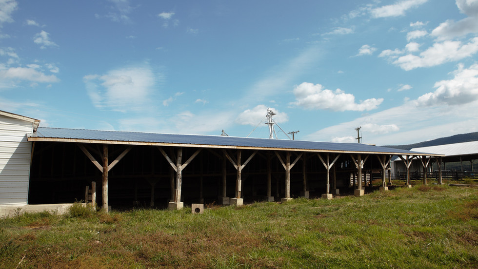 cattle-barn-5jpg