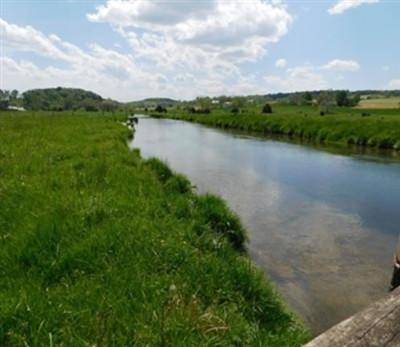 creek-picjpg