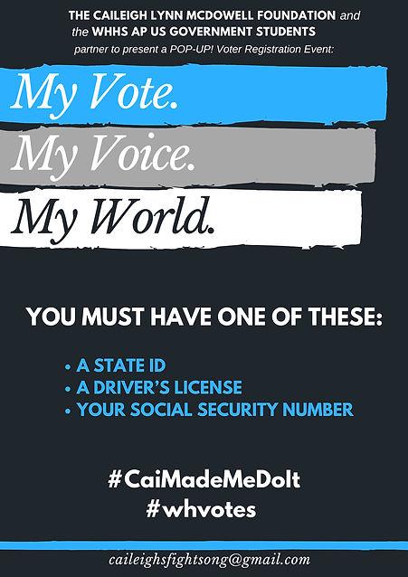 Plain Voter Registration  Poster (1).jpg