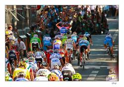TOUR 2010 REIMS Victoire d Alessandro Petacchi [1600x1200].jpg