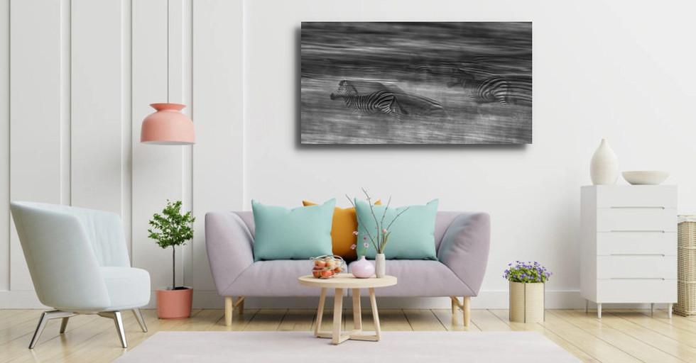 ZÉBRA RACE couleurs-pastel-interieur-102