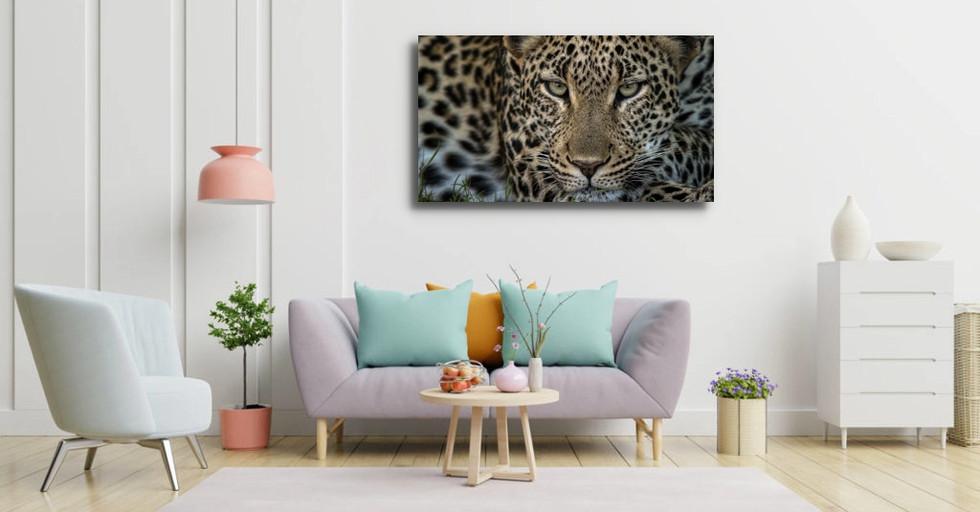 REGARD LÉOPARD couleurs-pastel-interieur