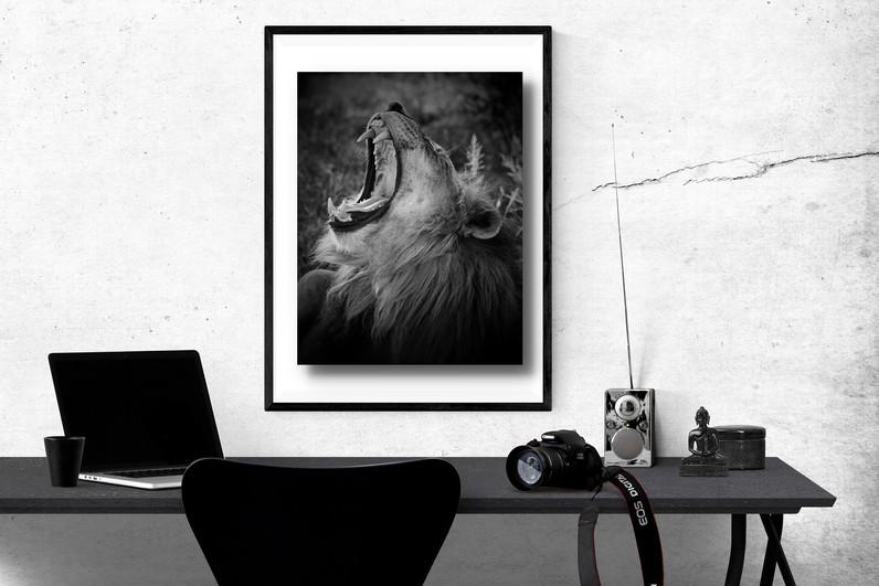 poster-LION.jpg
