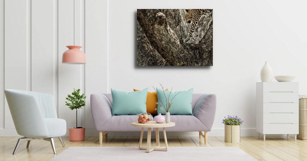 LÉOPATE couleurs-pastel-interieur-1024x5