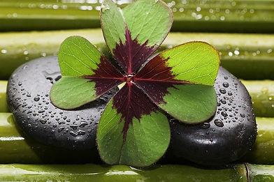 four-leaf-clover-3589385_640.jpg