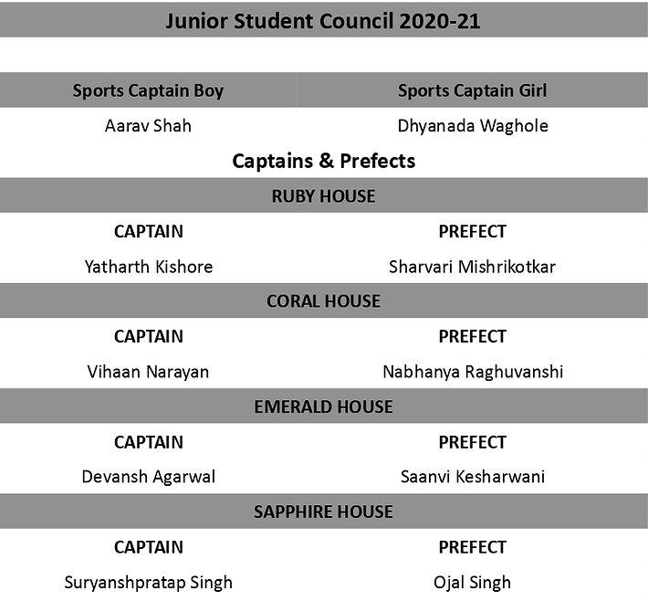 council jr1_page-0001.jpg