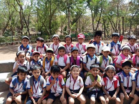 Pre-primary school picnic