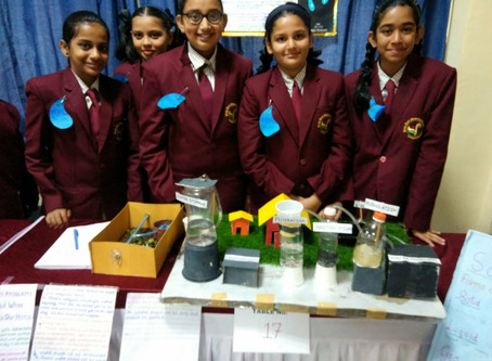 Intra School Science Fest