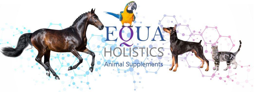 Equa Holistics