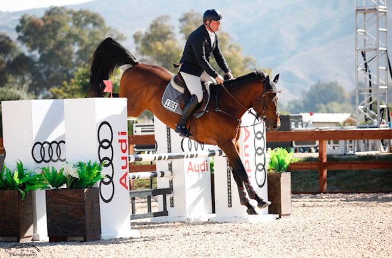 Diamante Fino 1.20m jumpers.jpg