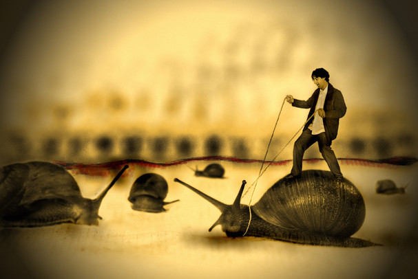 The Snail Rider