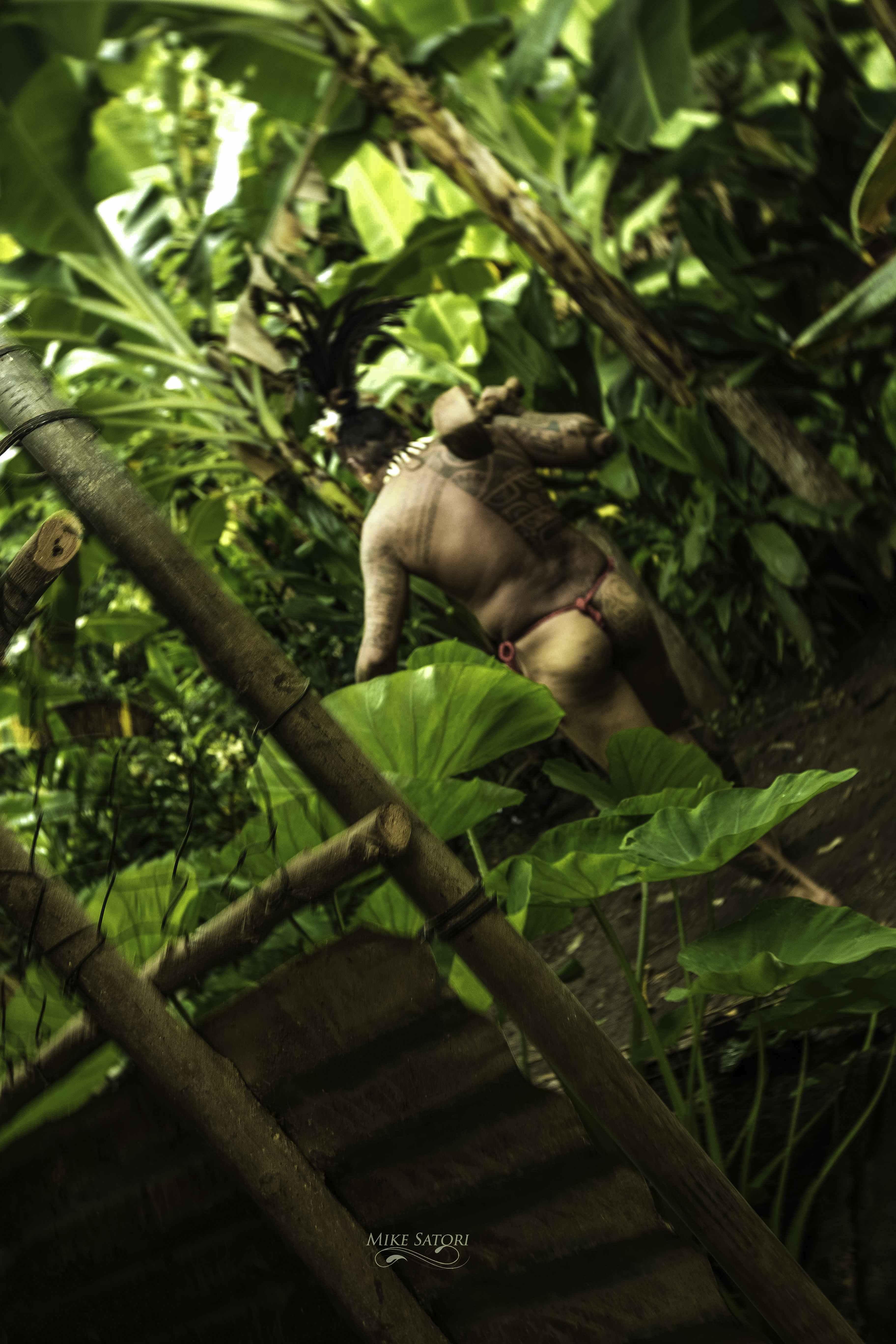 Wild Man - Marquesas