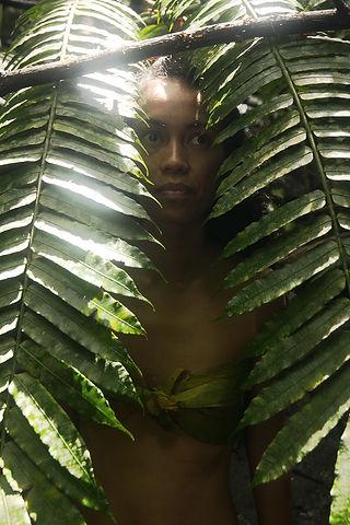 Jungle Calling.JPG