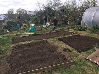 Allotment 4.jpg
