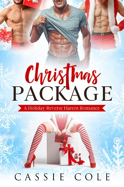 Christmas Package