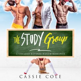 X17. The Study Group Audible.jpg