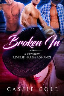 Broken In