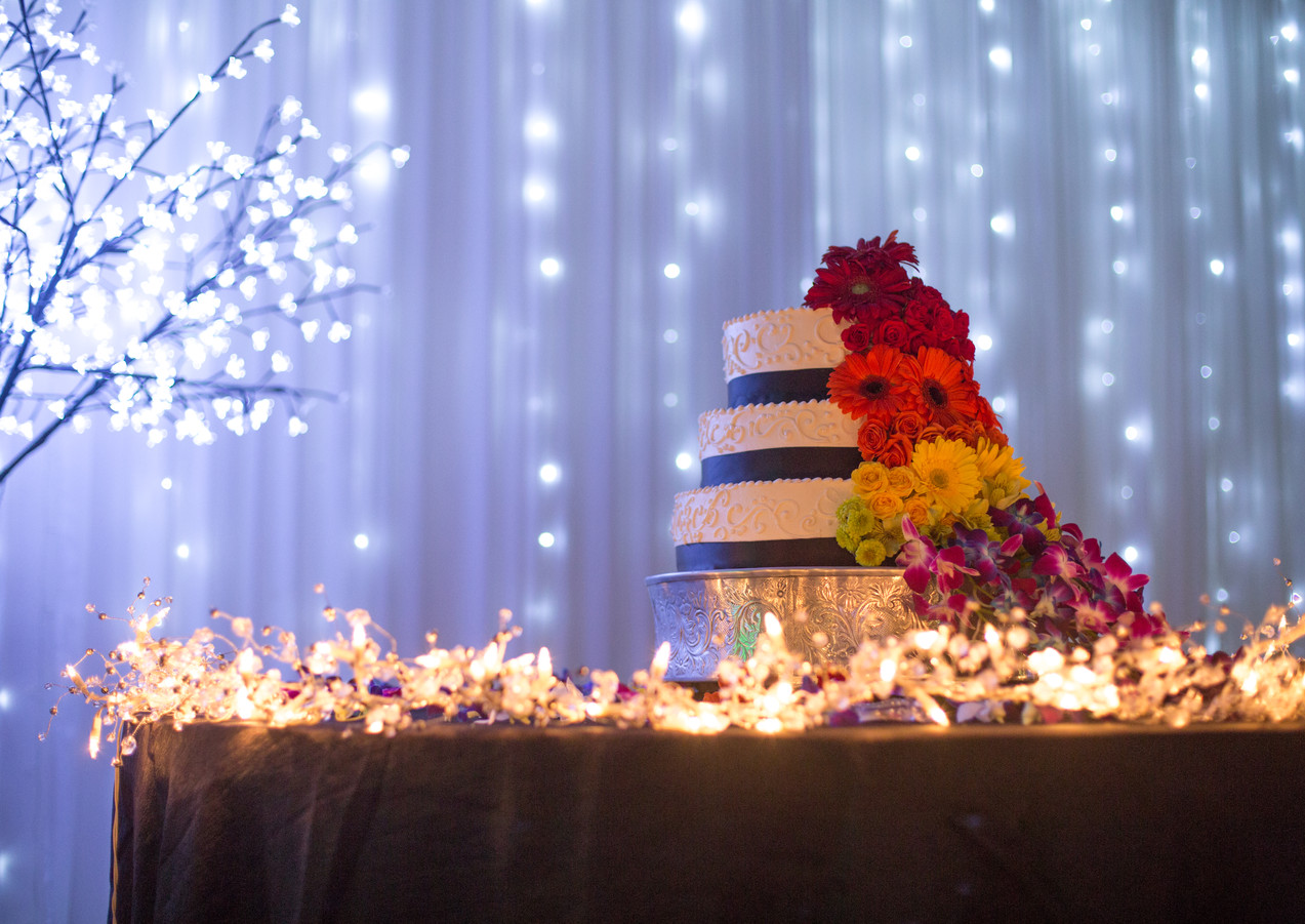 Wedding Cake with String Light Backdrop