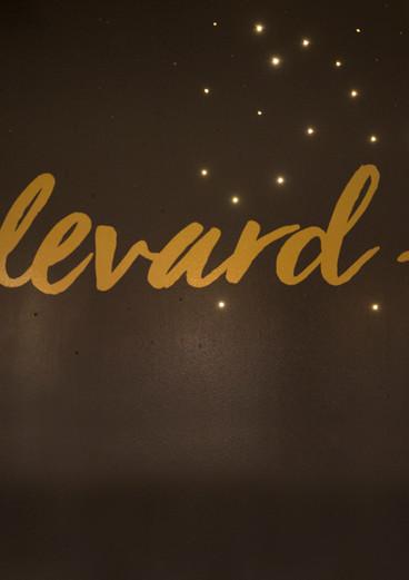BLVD's Bar Twinkling LED Wall