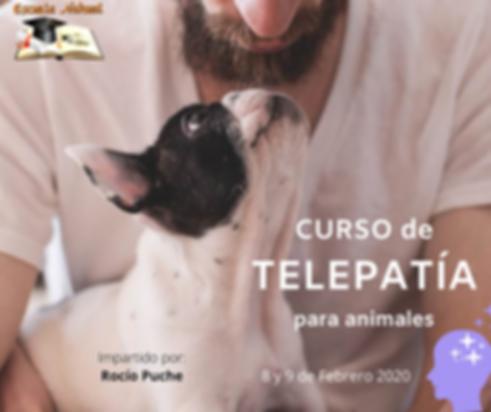 CURSO DE TELEPATÍA(1).png