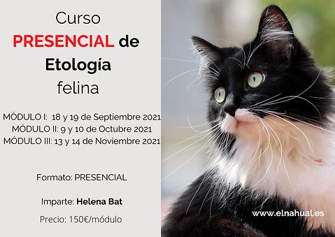 Curso de Etología Felina PRESENCIAL.png
