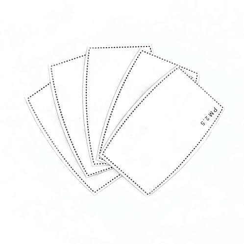 PM2.5 Replacement Filters (5 Pack)
