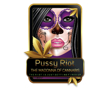 PUSSY RIOT 1-01.png