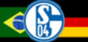 Schalke 04 Brasil 3.png