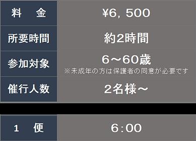 青SNO 料金.png
