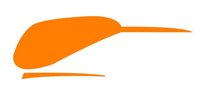 Kiwi Decals - Pair