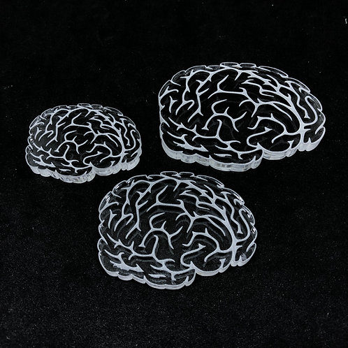 Gehirn Set Silikonform