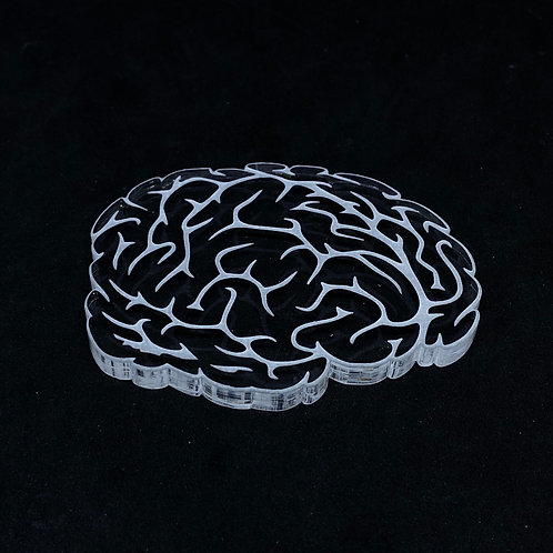 Gehirn Silikonform