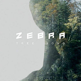 Zebra, Tree Song