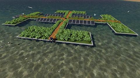Nutrient Mitigation Island.jpg