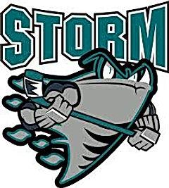storm_logo22222.jpg