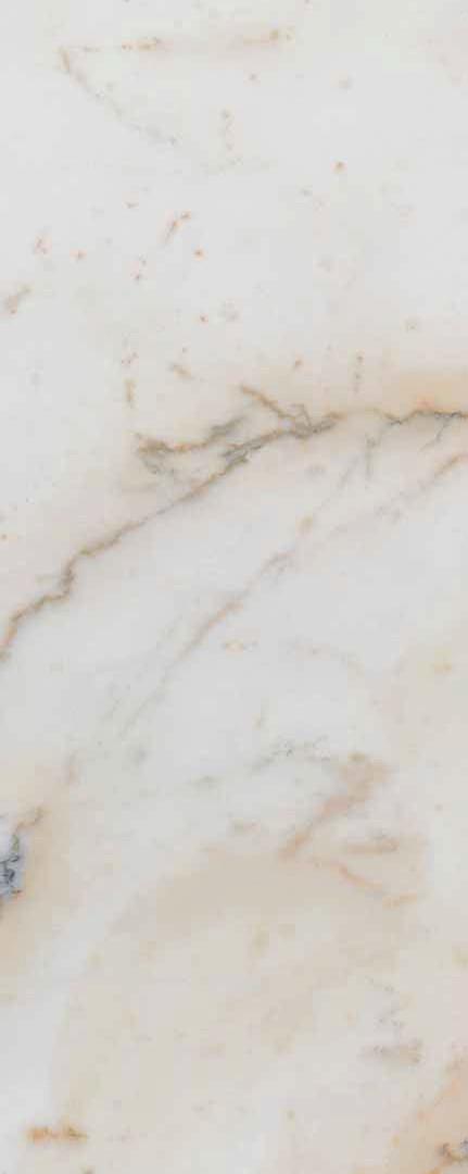 paonazetto sample.jpg