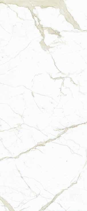 WHITE CALACATTA sample.jpg
