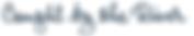 CBTR logo.png