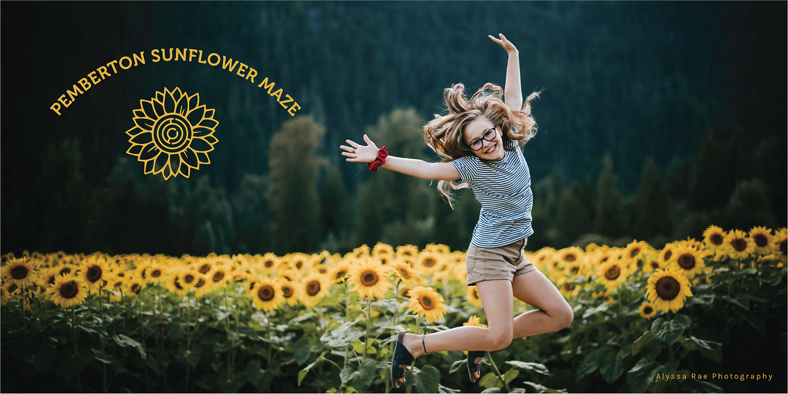 Pemberton Sunflower Maze_ShowPass_Banner