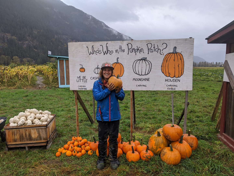 Pumpkins 9