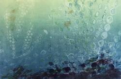 Undersea IV