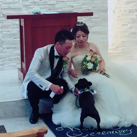 大切な家族(わんこも出席)結婚式