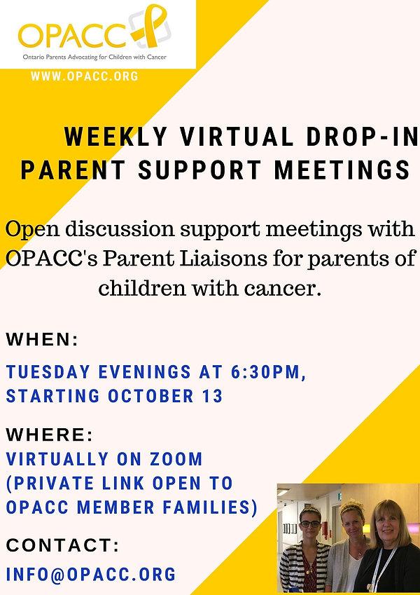 virtual meetings.jpg