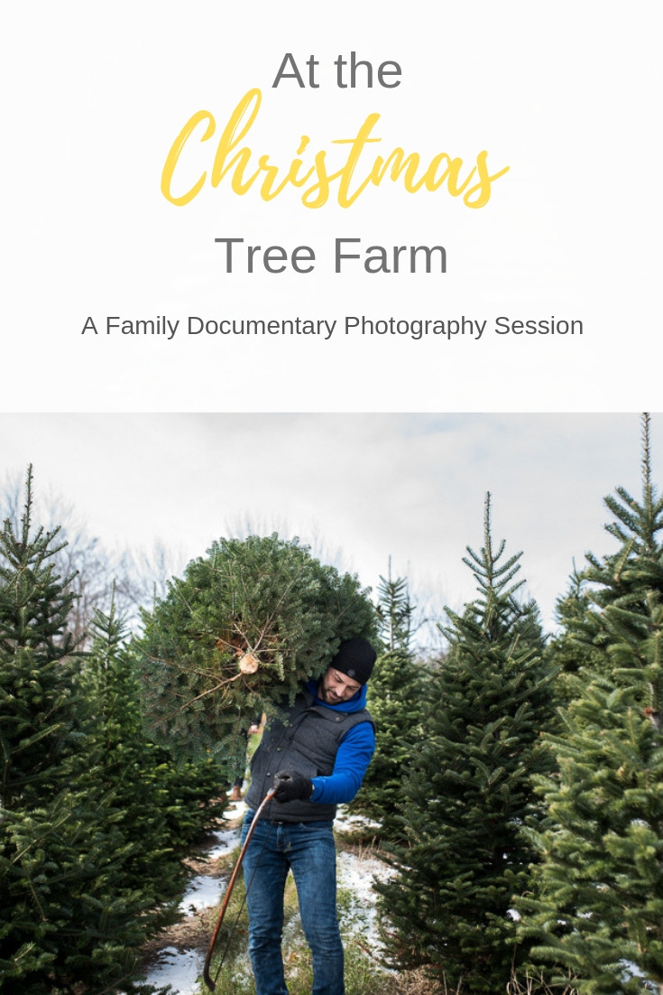Christmas-Tree-Farm-Toronto-Family-Photography