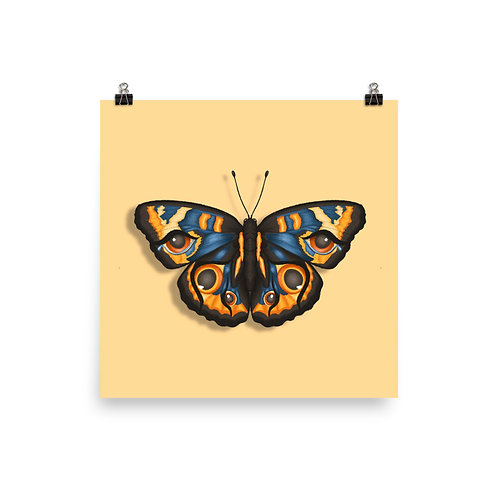 Butterfly Cry Poster