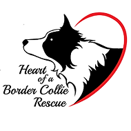 Hoabcr Logo.png