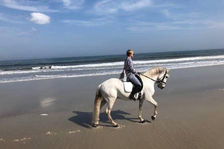 Advanced rider beach excursions:please inquire