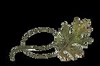 Twisty Black Oak Leaf.png